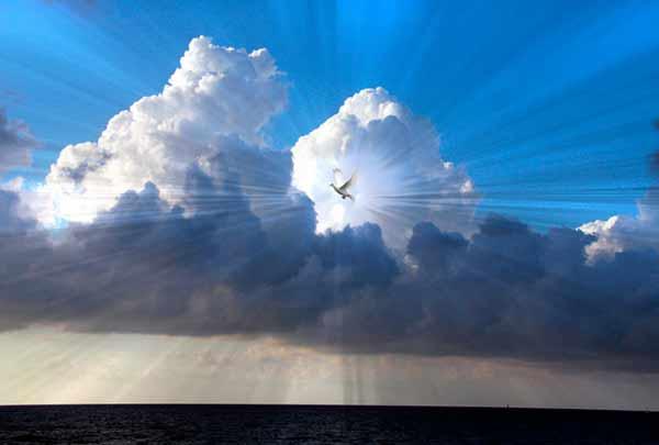 Господь Ісус визначив